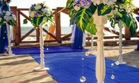 Выездная церемония в сине-белом цвете. Оформление и ведение. Херсон